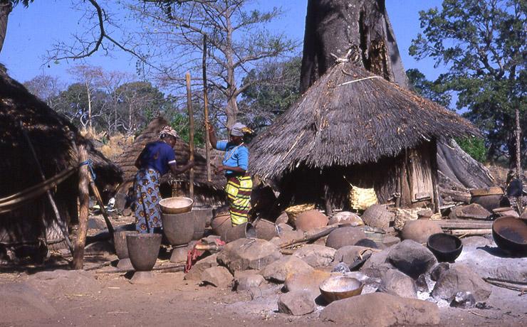 バサリ地方:バサリ族、フラ族、ベディック族の文化的景観