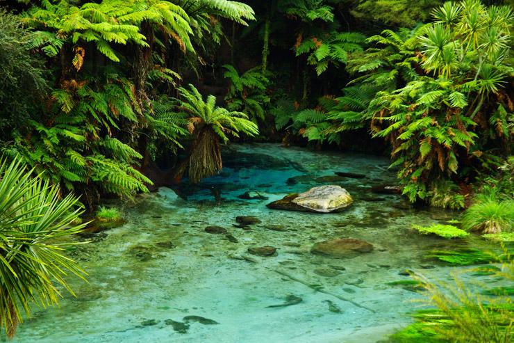 信じられないほど青く透通った泉『ブルースプリング(Blue Spring)』