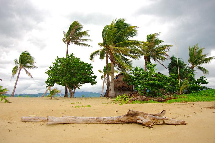 ホンダ湾の無人島