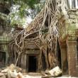カンボジアの世界遺産