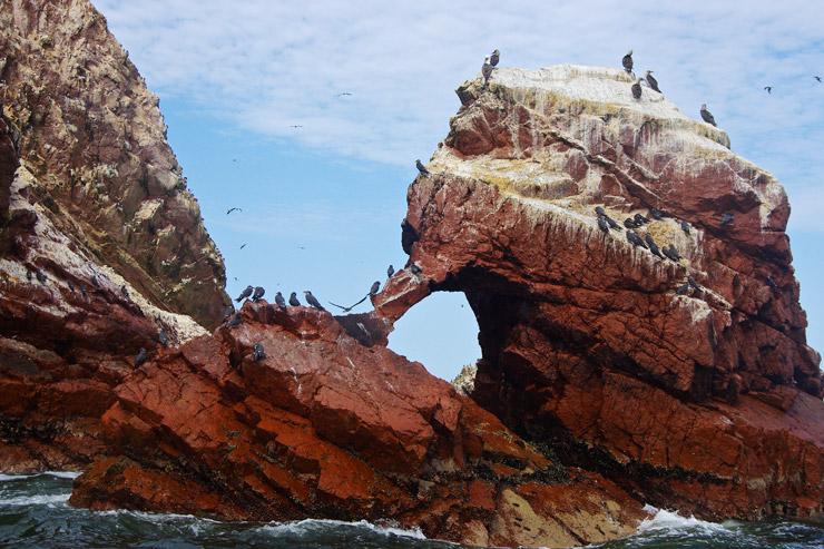 リトルガラパゴス『バジェスタ諸島』
