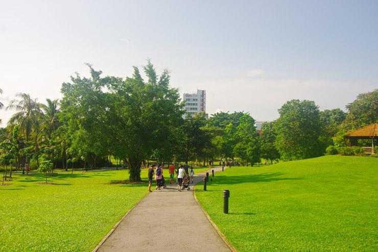シンガポール植物園の画像 p1_17
