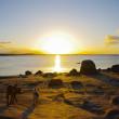 人生に極上の時間を | レンタカーでオーストラリア大陸縦断の旅