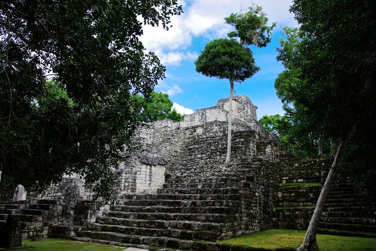 カラクムル遺跡のピラミッド