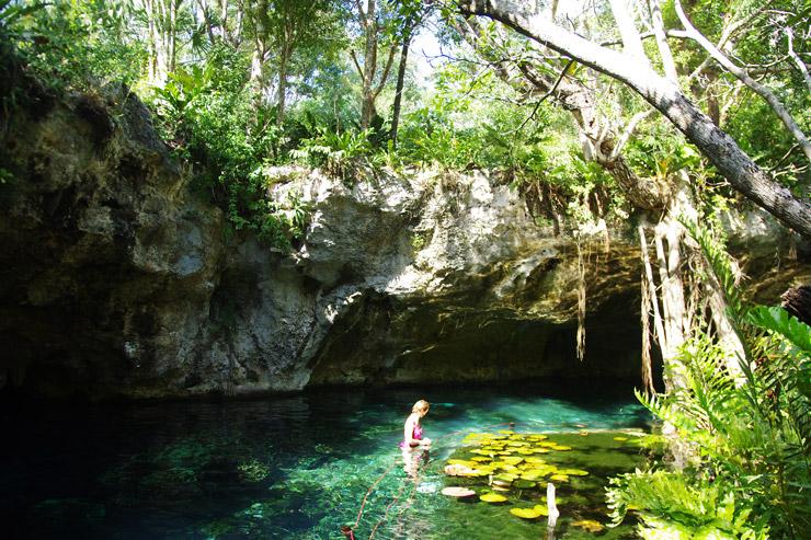 グラン・セノーテ(Gran Cenote) | 極上の透明度に差し込む光のカーテン