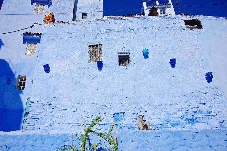 美しい青い町シェフシャウエン