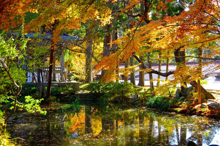 紅葉の美しい中尊寺