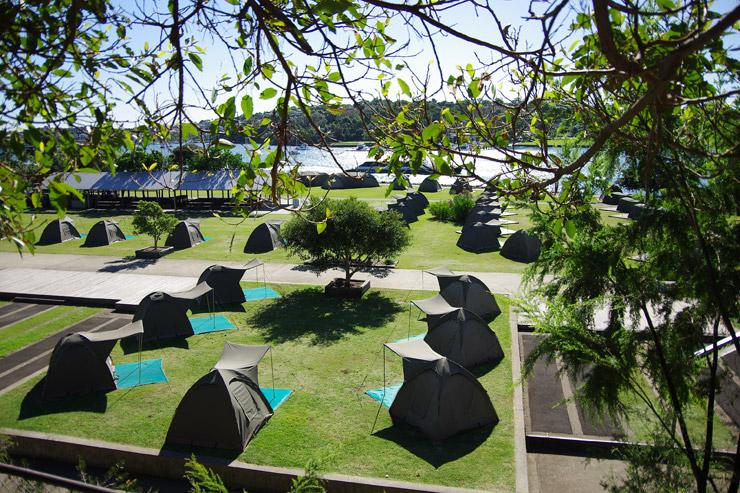 コッカトゥー島のテントサイト