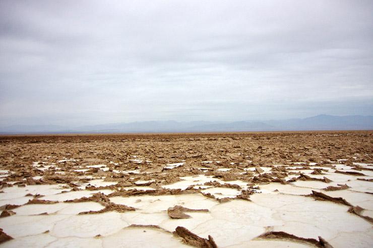 乾燥した塩の大地がひび割れている