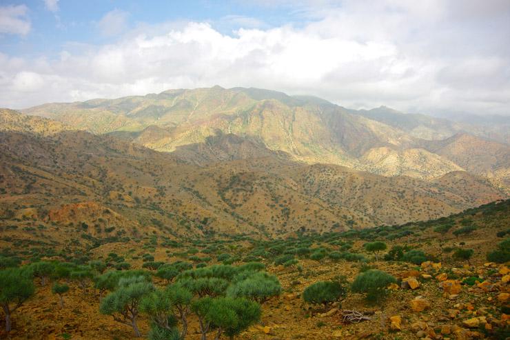 エチオピアの風景