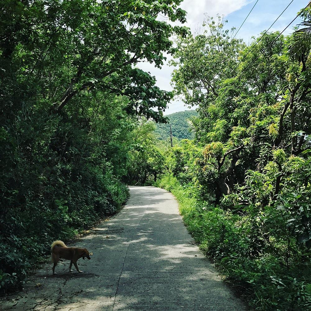 フィリピンで4週間、マンツーマンで英語の発音を勉強した結果