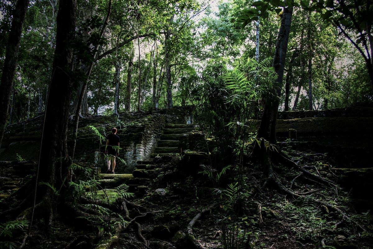 マヤ最大の遺跡『エル・ミラドール』