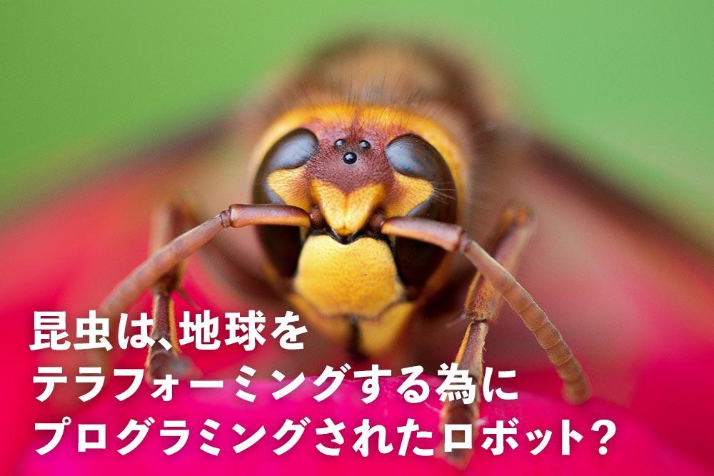 昆虫はAIで動く有機ロボット説