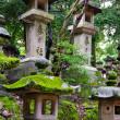 春日大社(かすがたいしゃ)| 世界遺産『古都奈良の文化財』
