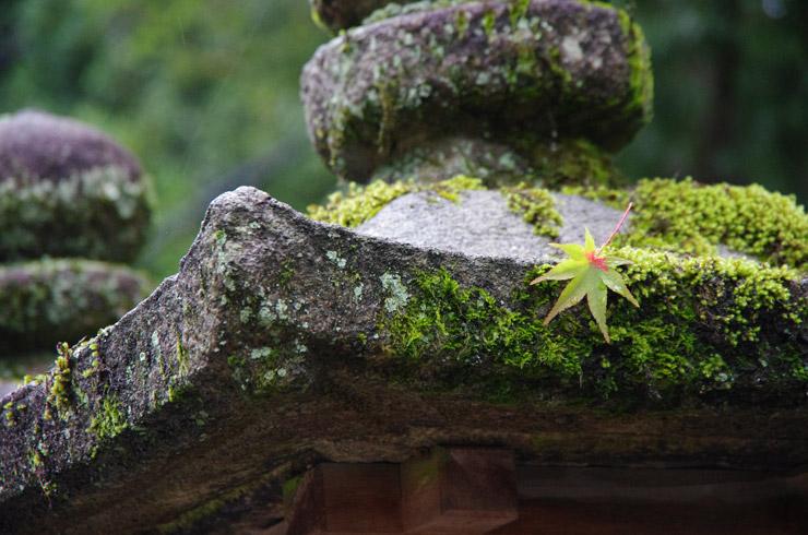 春日神社の雰囲気が好きだ