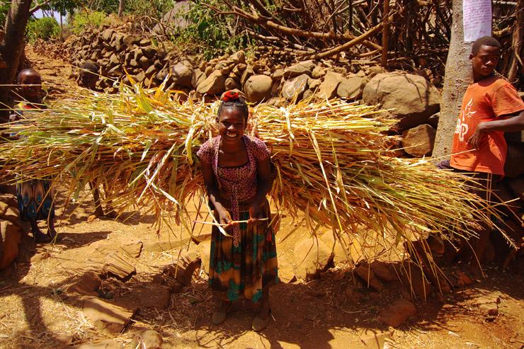 コンソの文化的景観 | エチオピアの世界遺産