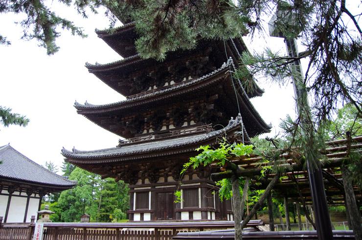 興福寺(こうふくじ)| 世界遺産『古都奈良の文化財』
