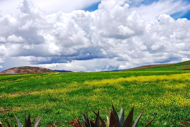 モライ遺跡近郊の高原