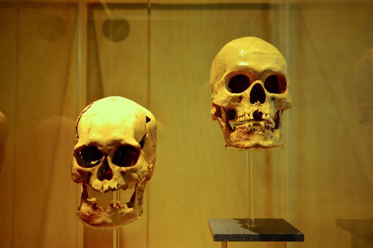 メキシコ国立人類学博物館