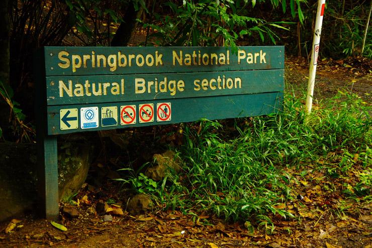スプリングブルック国立公園(Springbrook)のナチュラルブリッジ(natural bridge)