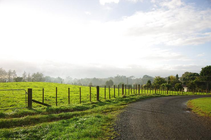 ニュージーランドのキャンプ文化とワーホリ文化