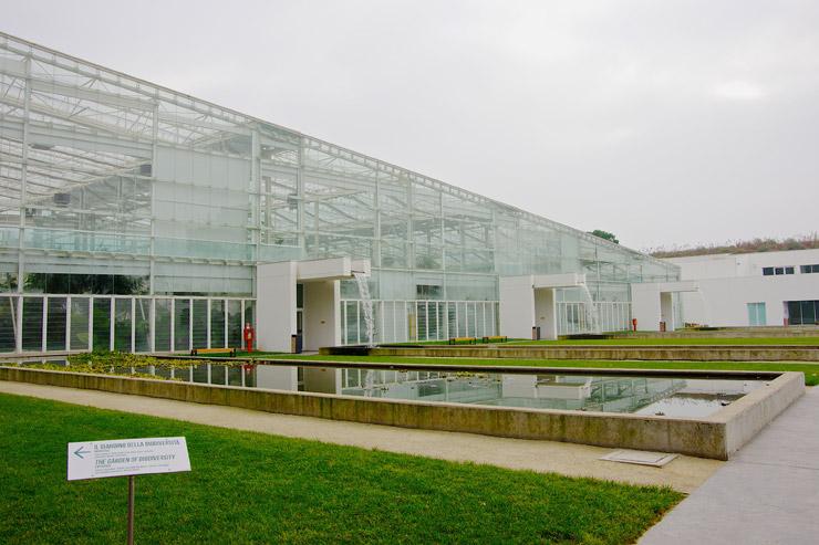 世界最古の植物園『パドヴァの植物園(オルト・ボタニコ)』