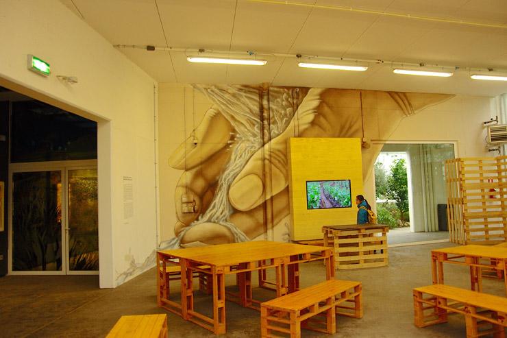 パドヴァの植物園(オルト・ボタニコ)