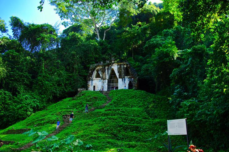 葉の十字の神殿
