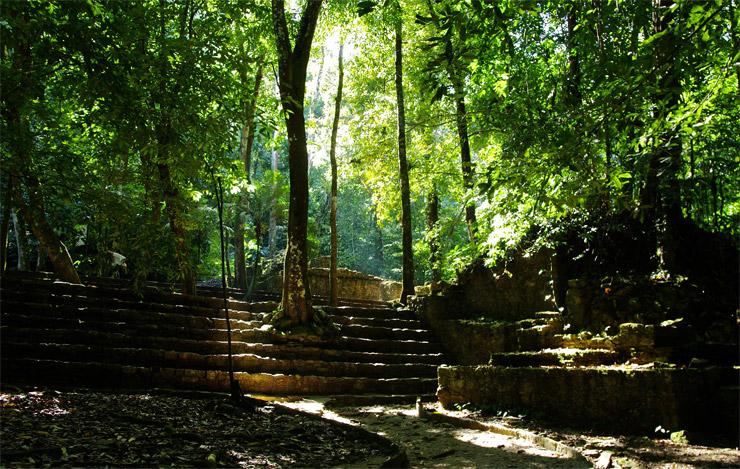 古代都市パレンケと国立公園