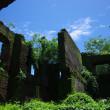 パオアイのサン・オウガスチン教会の隣にある草木が生い茂る廃墟の写真