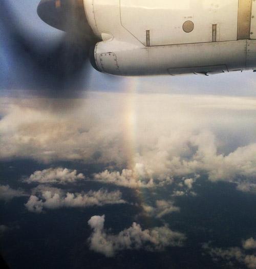 飛行時から見た珍しい虹