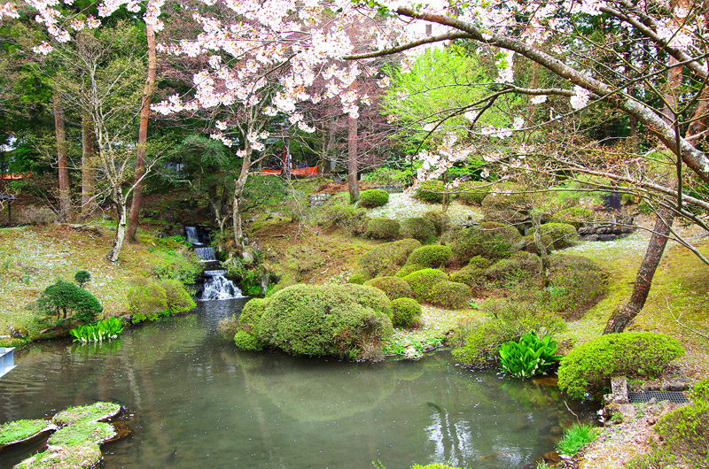 三仏堂の庭
