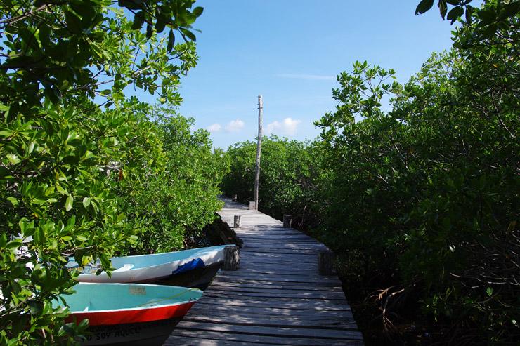 シアン・カアン生物圏保護区