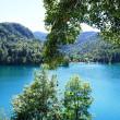 スロベニアの世界遺産、一覧