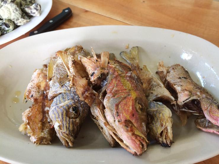 釣った魚のフライ