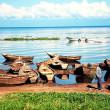 ウガンダの世界遺産、一覧