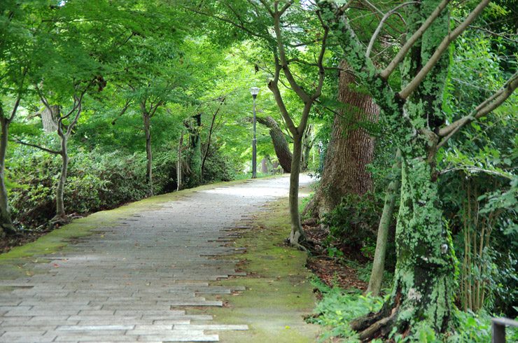 平等院から宇治上神社への道